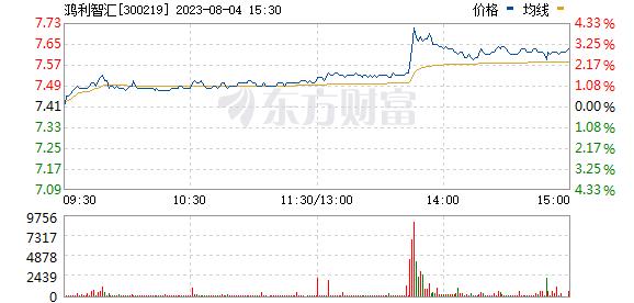 鸿利智汇(300219)