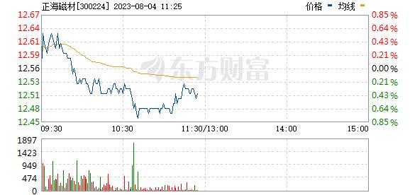 正海磁材(300224)