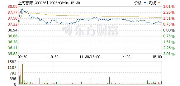 上海新阳(300236)