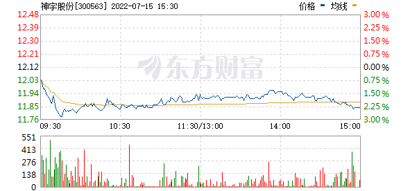 神宇股份(300563)