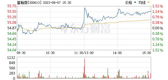 富瀚微(300613)