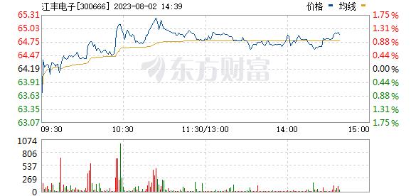 江丰电子(300666)