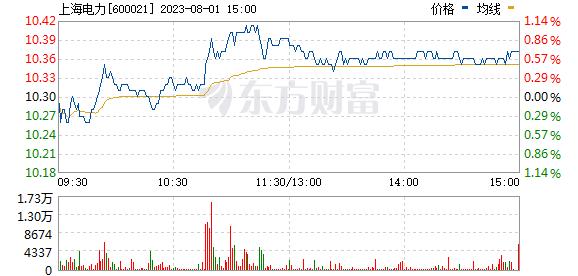 上海电力(600021)