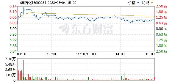 中国石化(600028)