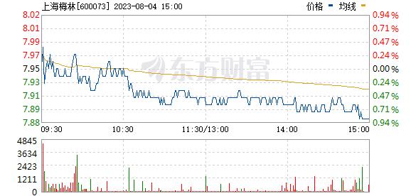 上海梅林(600073)