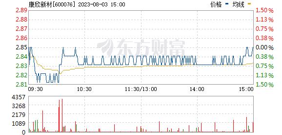 康欣新材(600076)