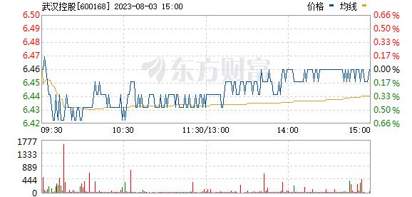 武汉控股(600168)