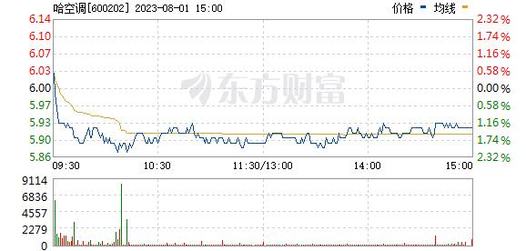 *ST哈空(600202)