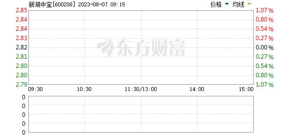新湖中宝(600208)