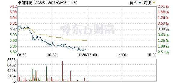 *ST松江(600225)
