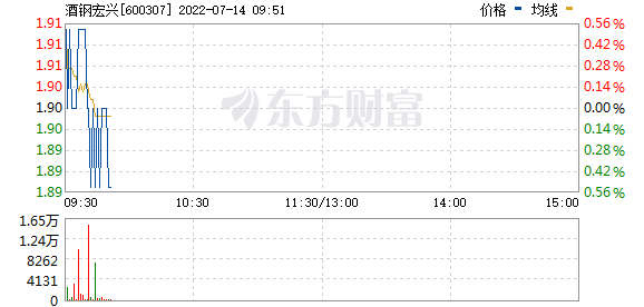酒钢宏兴(600307)