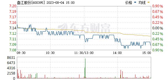 盘江股份(600395)
