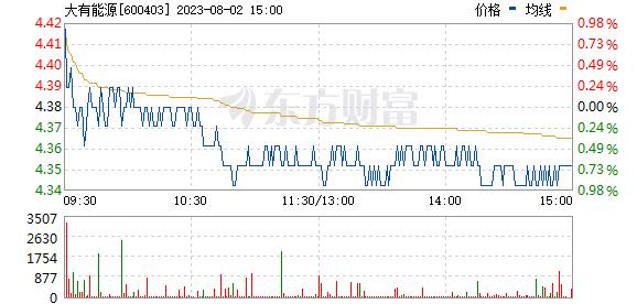 *ST大有(600403)