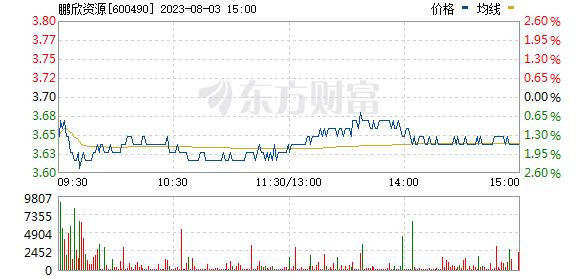 鹏欣资源(600490)