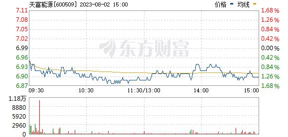 天富能源(600509)