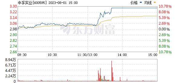 中孚实业(600595)