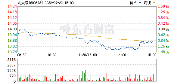 北大荒(600598)