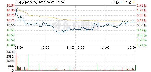 中毅达(600610)