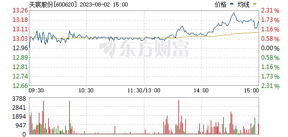 天宸股份(600620)