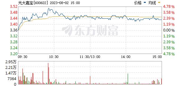 光大嘉宝(600622)