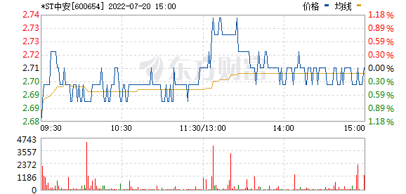 ST中安(600654)