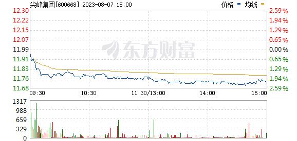 尖峰集团(600668)