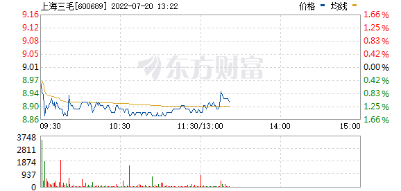 上海三毛(600689)