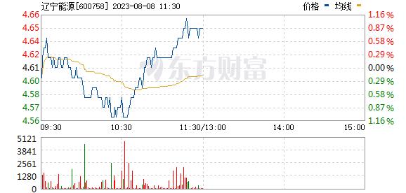 红阳能源(600758)