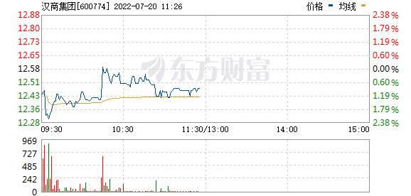 汉商集团(600774)