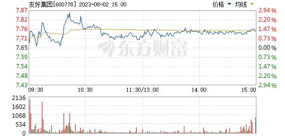 友好集团(600778)