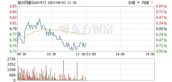 浙大网新(600797)