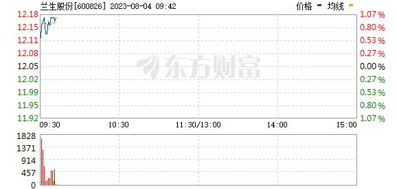兰生股份(600826)