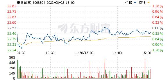 华东电脑(600850)