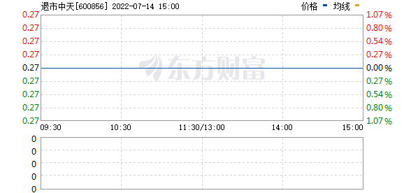 中天能源(600856)