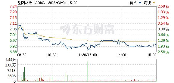 岳阳林纸(600963)