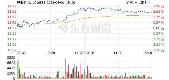 赛轮金宇(601058)