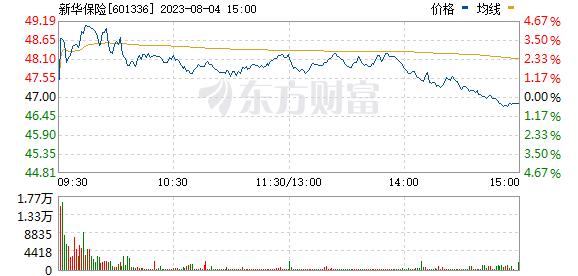 新华保险(601336)