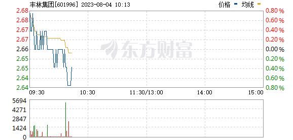 丰林集团(601996)