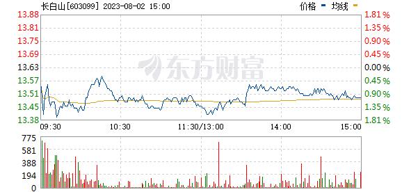 长白山(603099)