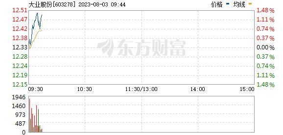 大业股份(603278)
