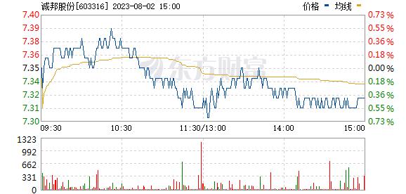 诚邦股份(603316)