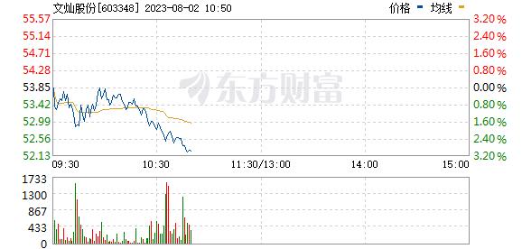 文灿股份(603348)