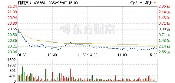 柳州医药(603368)