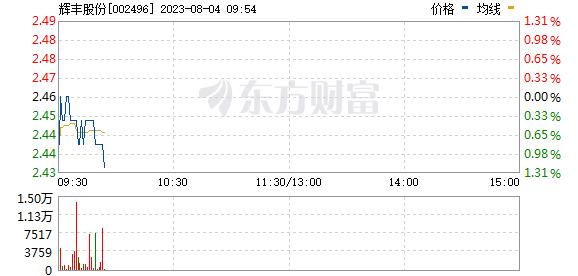 辉丰股份8月11日盘中跌幅达5%